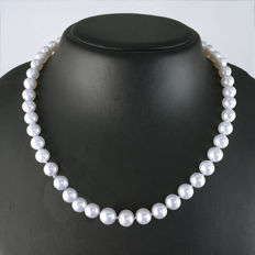Akoya pearl necklace 47cm with 585 yellow gold clasp, hallmarked