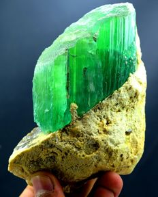 Large terminated & undamaged lush green Kunzite crystal on matrix - 130*102*40mm - 650g