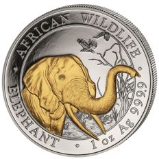 1 oz African Wildlife series - elephant 2018 - 100 shillings - 999 silver - silver coin with 24 carat gold finish