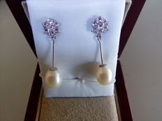 Earrings in 18 kt white gold with Akoya pearls and zirconias