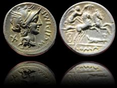 Roman Republic - M. CIPIUS M. F. (16,88mm, 3,34gr) AR Denarius (115-114 BC). Rome mint. Victory driving galloping biga right; rudder below