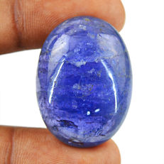Big Size Genuine tanzanite Cabochon Gem - 28x21x11 mm - 66cts