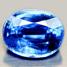 Kyanite - Royal Blue - 3.03 ct
