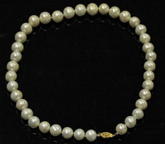 Classic South Sea Pearl necklace 10-11mm. - No reserve