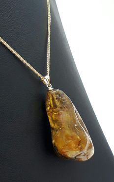 14 Ct Gold Baltic Amber Pendant with 14 Ct  Gold chain,Chain length: 50 cm,Weight:9.08 g