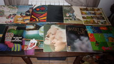 lot of 12 LP album