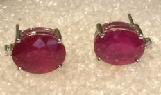14 kt White gold  ruby earrings set with a single stone.  size 12x 8  mm