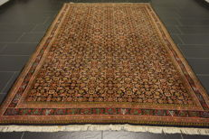 Oriental carpet Indo Bidjar Herati 240 x 335 cm made in India end of the last century
