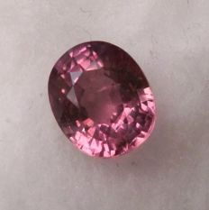 Pink Sapphire – 1.48 ct
