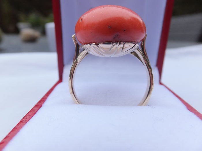 Elegant ladies' ring in 14 kt gold, with large precious coral, cabochon cut. Europe.