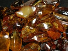 Natural Baltic amber lot - 186 gr.