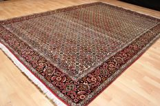 Königlicher Orient - Zandjan BIJAR carpet - 300 x 200 cm - overall good condition