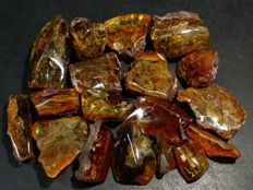Natural Baltic amber lot - 178 gr.