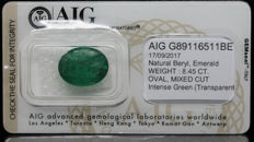 Emerald Intense Green 8.45 ct   No Reserve Price