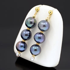 18k/750 yellow gold earrings with cultured pearls - Length, 47 mm.