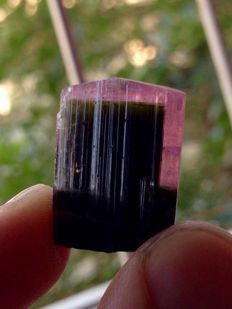 Lot of Bi-colour Tourmaline Crystals - 100 cts (2)
