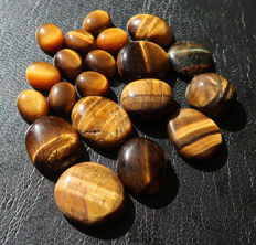 Tiger's Eye - untreated Cabochons - 10 to 38 mm - 134ct (20)