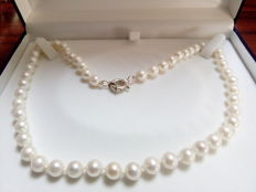 Akoya Pearl necklace with a silver boat clasp 925 mls
