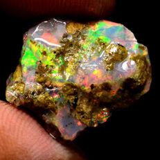 Multicolor Rainbow Opal - 15 x 14 x 9 mm - 7.45 ct