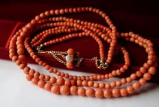 Around 1900, Antique 3-strand untreated coral necklace with natural salmon color and a gold-plated clasp enchanted with an Orient pearl **No Reserve**