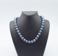 Blue  freshwater pearl with 14 carat yellow gold clips  , 43 cm approx