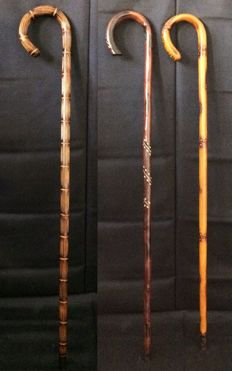 Three Shepard  Handmade Canes - Portugal - 1900 and 1920