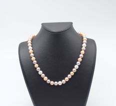 Multi colour ( white , pink , purple )    freshwater   pearl with 14 carat yellow gold clips  , 43 cm approx