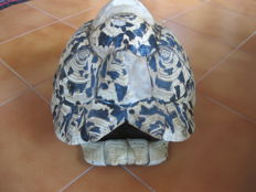 Taxidermy - African Leopard Tortoise, carapace with missing shell plates - Stigmochelys pardalis - 31 cm