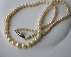 ca. 1930/40 Antique handcrafted necklace with salt water pearls enchanted by a 14kt. white/yellow gold fine Art Deco clasp.