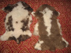Fine pair of natural Jacob Sheep skins - Ovis aries - 104 x 61cm and 90 x 60cm  (2)