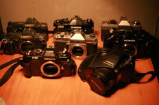 Lot of single-lens reflex cameras, bodies only (8 pieces) (Canon, Chinon Praktica, Nikon, Konica)