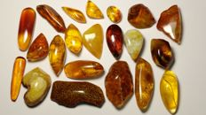 Natural Baltic amber cabochons lot - 250 ct.