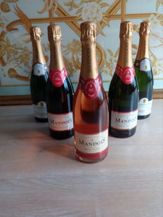 Champagne Small Grower selection - 6 bottles including  Mandois Brut, Mandois Brut Rose, Delot Blanc des Blanc