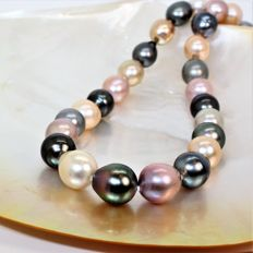 Long necklace of natural multicoloured pearls from the South Seas BQ Ø 11-13.3 mm