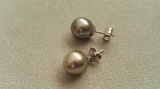 18 kt white gold earrings with Tahitian pearls