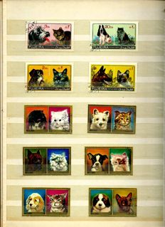 Themes Cat-and-dog, cats, dogs, horses, flowers, boats - Batch in stock books