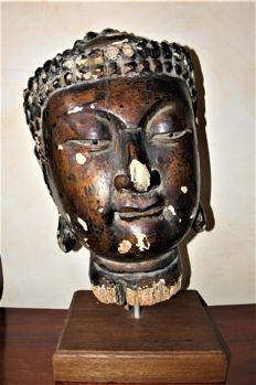 Large Buddha head in lacquered wood (ca.  45 cm) - China - 16th/17th century (Ming dynasty)