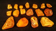 Lot of Egg yolk colour Baltic Amber pieces - 114 gm (17)