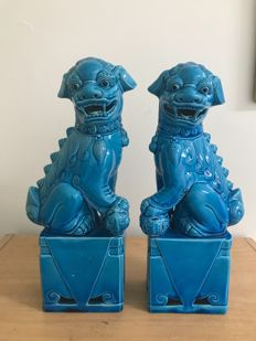 Pair of lions in turquoise porcelain - China - Second half/end of 20th century.