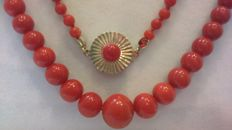 Coral necklace with a round 14 kt yellow gold clasp wirh a coral bead  in the center