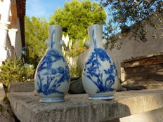 Beautiful pair of vases - China - 19th century