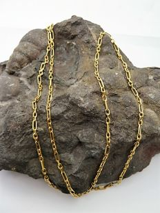 Chain of 18 kt gold - 60 cm