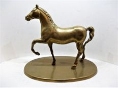 A beautiful bronze horse - France - circa 1970