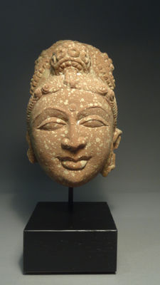 A Rare Stone Head of Yakshi - North Pakistan/India ca 100 A.D (Kushan period)