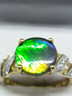 67 million year old Natural Canadian AA Polished Ammolite ring - 10 x 10 mm