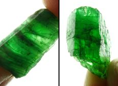 Natural Green Emerald Crystal lot - 2,1 to 2,7 cm - 64,60 ct - 12,93 gm (2)