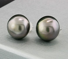A pair of stately Tahitian cultivated pearl earrings, approx. 13.2mm, anthracite-grey with peacock shimmer, 585 white gold --- no reserve price ---