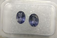 Couple Iolite Blue / Colorless 1.37 ct   No Reserve Price