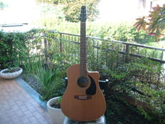 Seagull acoustic guitar for great musicians and amateurs seeking a very special sound