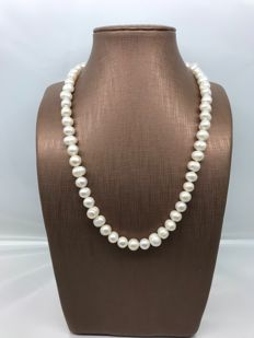 Necklace with freshwater cultured pearls and yellow gold clasp *** no reserve price ***